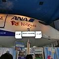 P1030819_Fotor.jpg