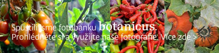 botanics2.jpg