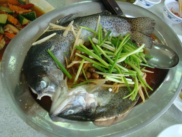 清蒸鱒魚~本桌最貴(NT560)