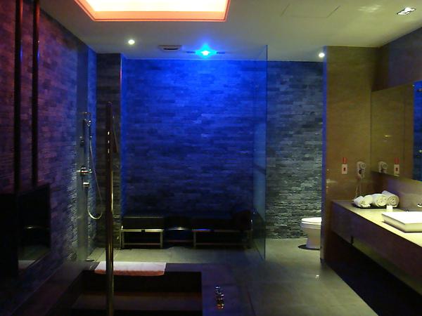 幾乎跟房間一樣大的浴室