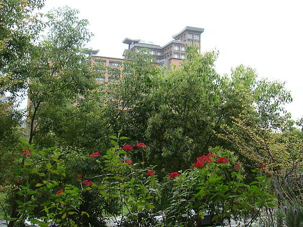 對面就是台北大學