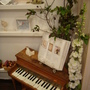 可愛的小鋼琴