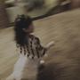 庭庭穿上花童服 開心的跑來跑去