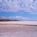 土耳其鹽湖03.jpg