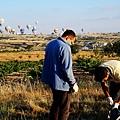 土耳其卡帕多其亞熱氣球51.jpg