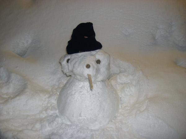 076_嘿嘿...奇怪滴小雪人