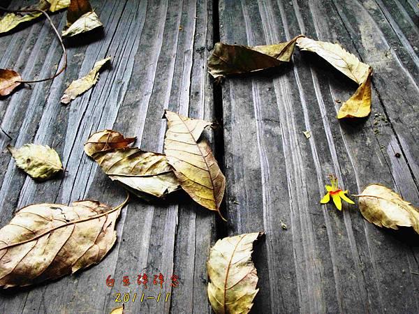 IMG_0064-1.jpg