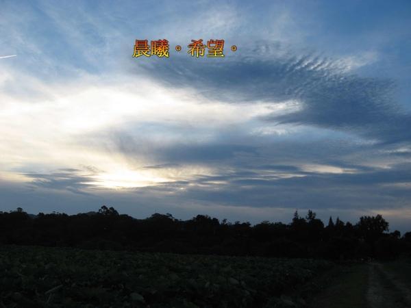 IMG_0249-1.jpg