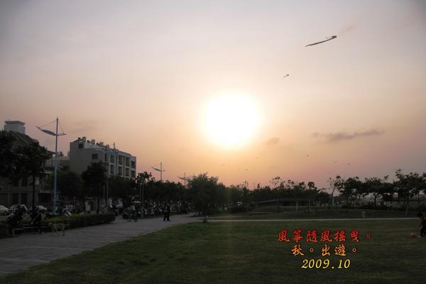 IMG_8331.jpg