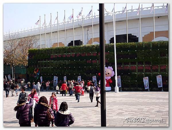 flowershowTP-04.jpg