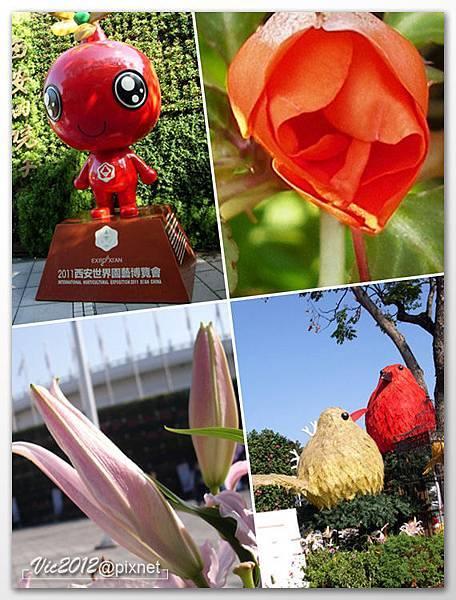 flowershowTP-32.jpg