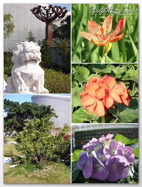 flowershowTP-39.jpg