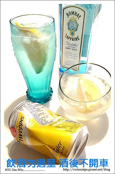 Gin Tonic 琴通寧-01.jpg