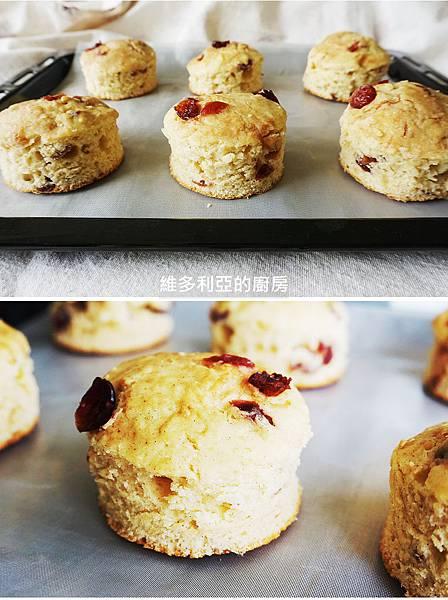 九州鬆餅粉-14蔓越莓比斯吉.jpg