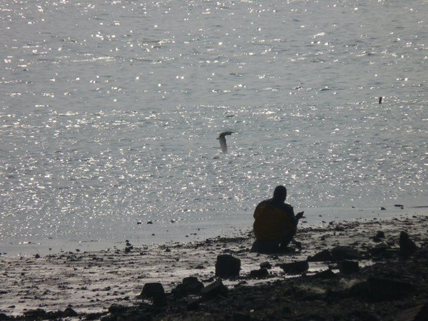 老人與鳥.jpg