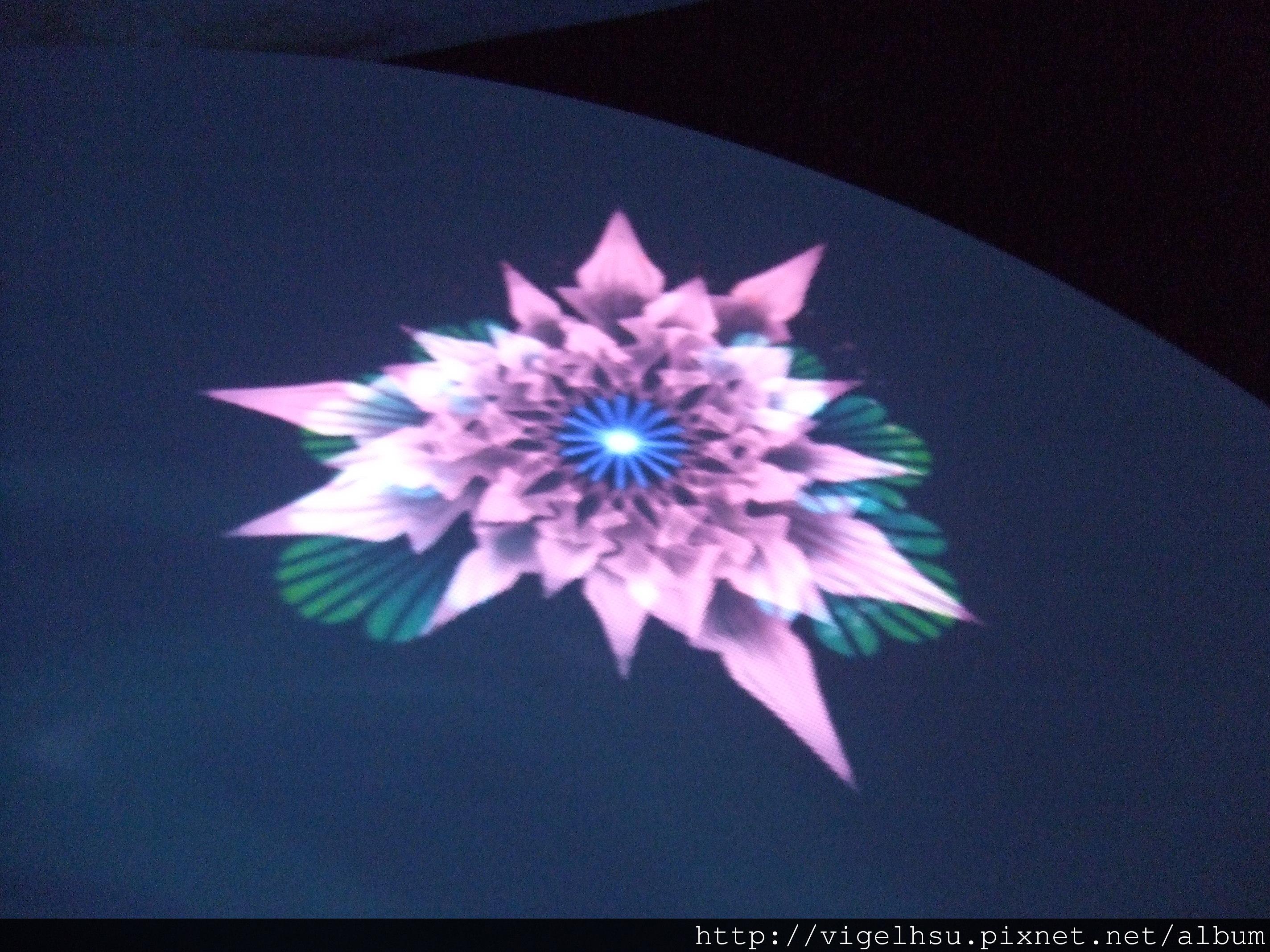 DSCF6041.jpg