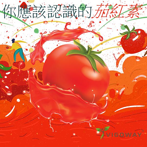 番茄紅素製圖.png