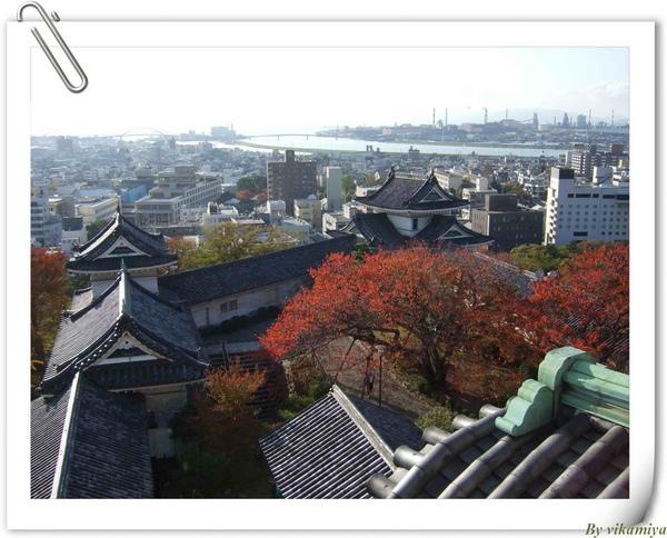 11.25 和歌山城5-遠方景色.jpg