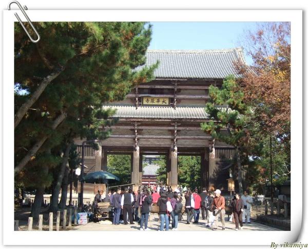 11.26 奈良東大寺1.jpg