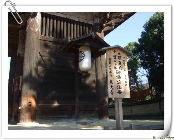 11.26 奈良東大寺2.jpg