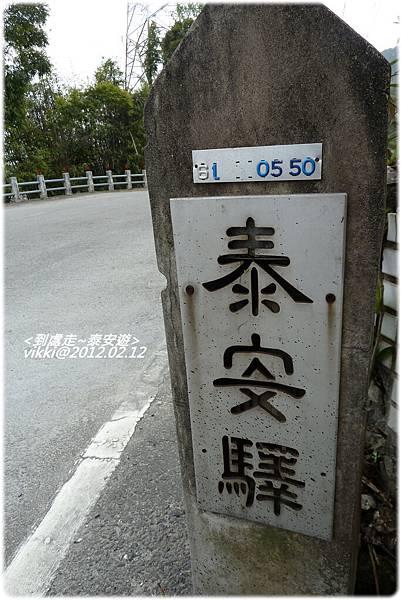 泰安遊P1110655.jpg