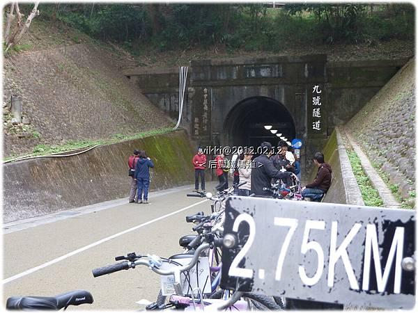 泰安遊P1110744-1.jpg