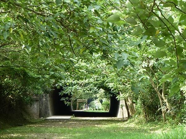 崎頂 子母隧道21