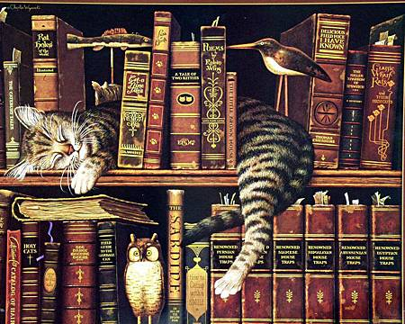 cats_library_books_owls_book_cat_owl_desktop_1712x1368_hd-wallpaper-642212
