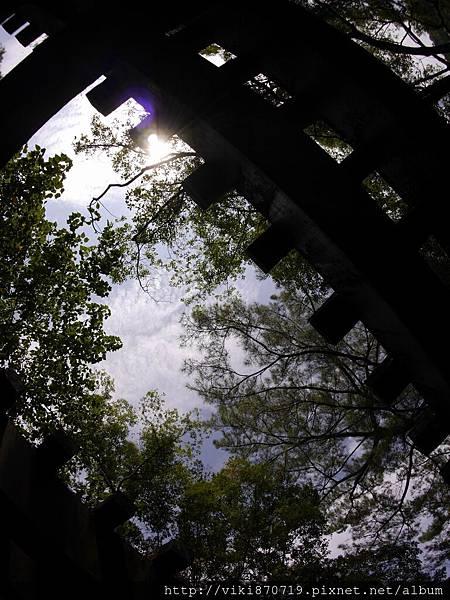20150806鳳林林田山林業文化園區29