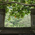 20150806鳳林林田山林業文化園區72