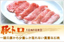 h2_tontoro.jpg