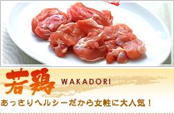 h2_wakadori.jpg