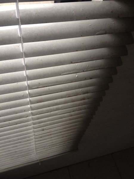 特力屋好幫手-清潔前客浴窗簾
