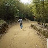 溪頭妖怪村 434