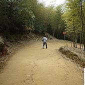 溪頭妖怪村 437