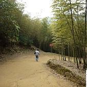溪頭妖怪村 438