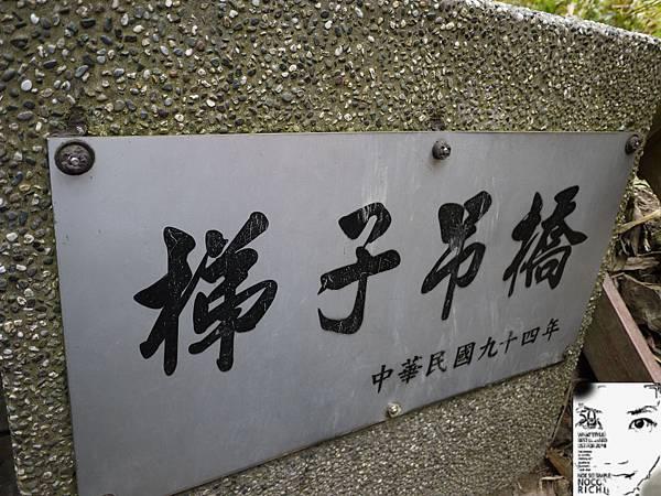 溪頭妖怪村 453