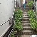 台南一日遊 095