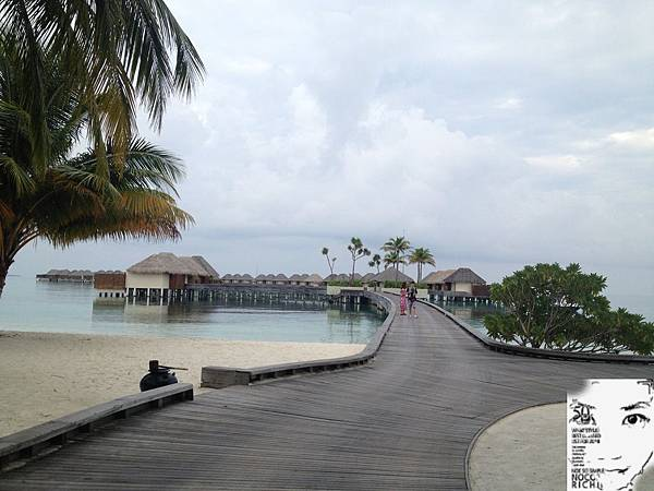 MALDIVES 050