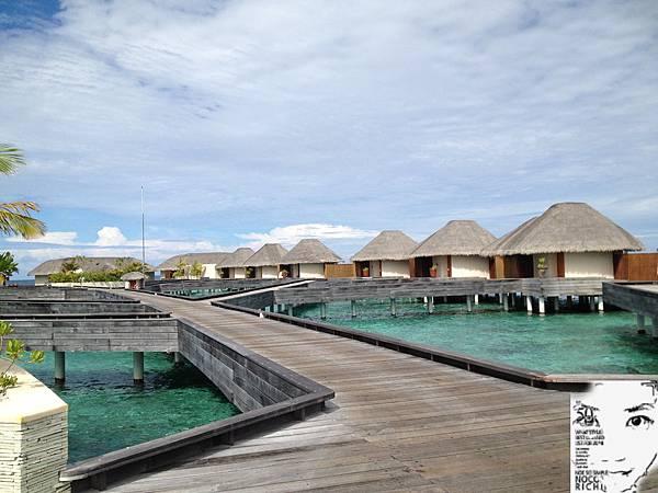 MALDIVES 437