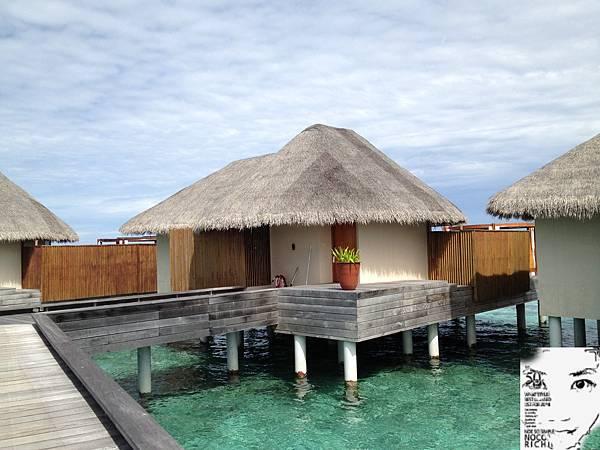 MALDIVES 443