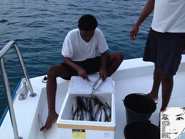 MALDIVES 526