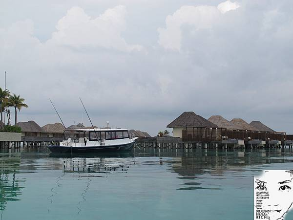 MALDIVES_2 239