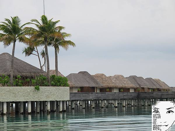 MALDIVES_2 242