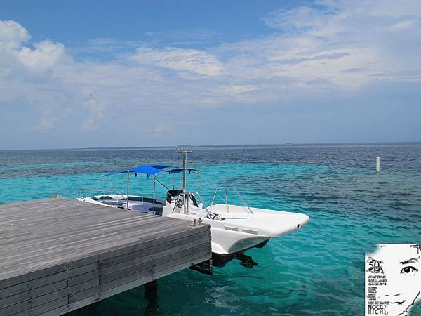 MALDIVES_2 295