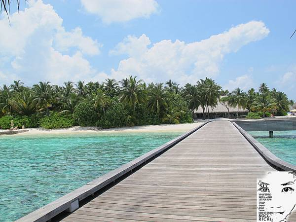 MALDIVES_2 297