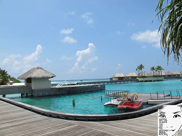 MALDIVES_2 298