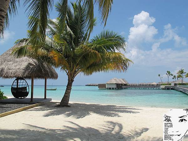 MALDIVES_2 321