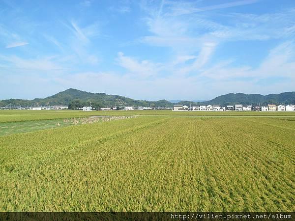 2013京都城崎美山町 047.JPG