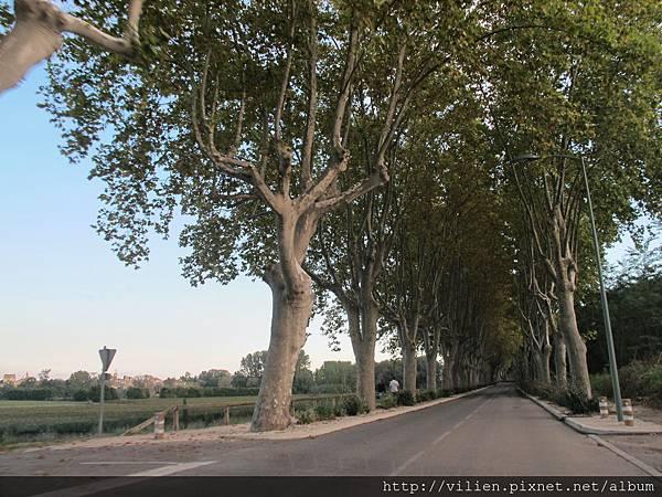 2014_Paris 601.JPG